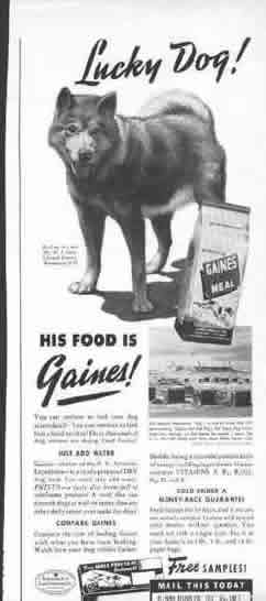 Lucky Dog his food is Gaines - old article featuring one of the original Admiral Byrd dogs